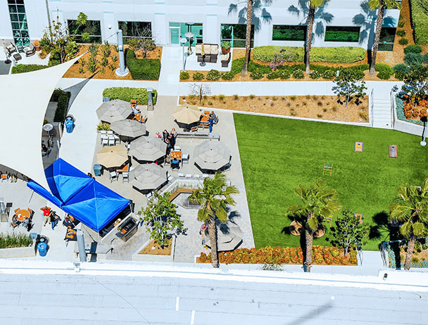 Aerial view of umbrella shaded tables on the courtyard at the Carlsbad campus